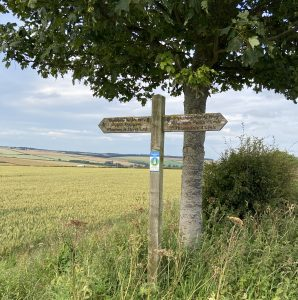 Yorkshire Wolds